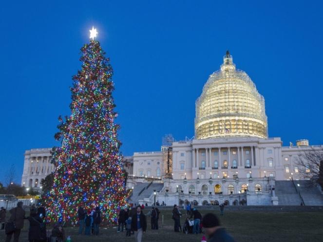 arvore-natalina-colocada-neste-fim-de-ano-na-frente-do-capitolio-sede-do-poder-legislativo-dos-estados-unidos-1418324796608_1024x768